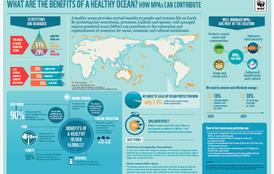 What-Are-The-Benefits-Of-A-Healthy-Ocean-Infographic ...